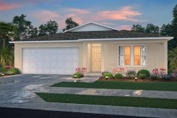 Photo of 11524 Exmore Street, SPRING HILL, FL 34606 (MLS # C7431987)