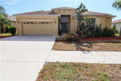 Photo of 2606 Hobblebrush Drive, NORTH PORT, FL 34289 (MLS # D5922631)