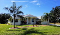 Photo of 14141 Chesswood Lane, PORT CHARLOTTE, FL 33981 (MLS # D6104618)