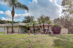Photo of 3454 Trinity Street, NORTH PORT, FL 34291 (MLS # D6113272)