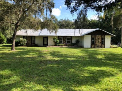 Photo of 34205 Chancey Road, WESLEY CHAPEL, FL 33543 (MLS # E2400410)