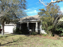 Photo of 6959 Runner Oak Drive, WESLEY CHAPEL, FL 33545 (MLS # E2401176)