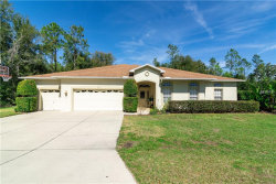 Photo of 36827 Summers Ridge Drive, DADE CITY, FL 33525 (MLS # E2401273)