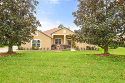 Photo of 10735 Lake Hill Drive, CLERMONT, FL 34711 (MLS # G5013291)