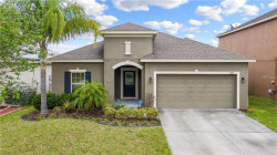 Photo of 425 Rock Springs Circle, GROVELAND, FL 34736 (MLS # G5014106)