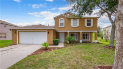 Photo of 885 Woodvale Street, CLERMONT, FL 34711 (MLS # G5018076)