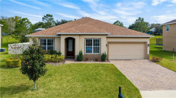 Photo of 9230 Ivywood Street, CLERMONT, FL 34711 (MLS # G5025810)