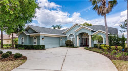 Photo of 9950 Spring Lake Drive, CLERMONT, FL 34711 (MLS # G5027834)