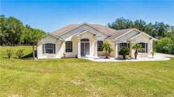 Photo of 10851 Cherry Lake Road, CLERMONT, FL 34715 (MLS # G5030612)