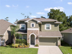 Photo of 17146 Gathering Place Circle, CLERMONT, FL 34711 (MLS # G5031365)