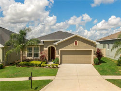 Photo of 17176 Gathering Place Circle, CLERMONT, FL 34711 (MLS # G5031655)