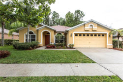 Photo of 1143 Wyndham Lakes Drive, ODESSA, FL 33556 (MLS # H2400147)