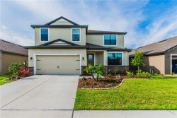 Photo of 11858 Thicket Wood Drive, RIVERVIEW, FL 33579 (MLS # H2400426)