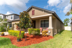 Photo of 854 Vino Verde Circle, BRANDON, FL 33511 (MLS # J906836)