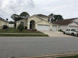 Photo of 14 White Marsh Circle, ORLANDO, FL 32824 (MLS # J909794)