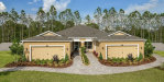 Photo of 11631 Cambium Crown Drive, RIVERVIEW, FL 33569 (MLS # J915463)