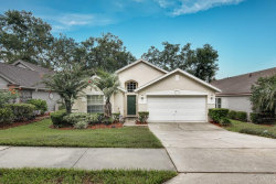 Photo of 1816 Cranberry Isles Way, APOPKA, FL 32712 (MLS # L4902630)