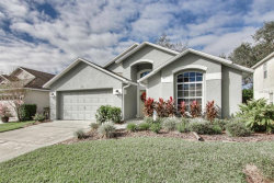 Photo of 1019 Clearpointe Way, LAKELAND, FL 33813 (MLS # L4905064)