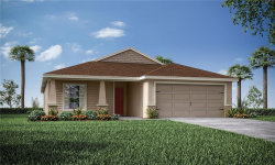 Photo of 11619 Stone Pine Street, RIVERVIEW, FL 33579 (MLS # L4915887)