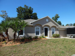 Photo of 1368 Lazy River Lane, DELAND, FL 32720 (MLS # O5403915)