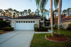 Photo of 1052 Trafalgar Drive, NEW PORT RICHEY, FL 34655 (MLS # O5566577)