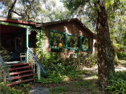 Photo of 1185 Piney Woods Trail, OSTEEN, FL 32764 (MLS # O5711298)