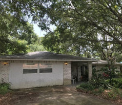 Photo of 801 Scenic Heights Drive, BRANDON, FL 33511 (MLS # O5715083)