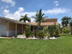 Photo of 533 Lillian Drive, MADEIRA BEACH, FL 33708 (MLS # O5717973)