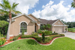Photo of 8851 Bel Meadow Way, TRINITY, FL 34655 (MLS # O5719744)