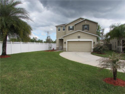 Photo of 18946 Parapet Place, LAND O LAKES, FL 34638 (MLS # O5721640)