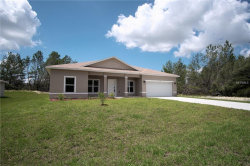 Photo of 346 Hibiscus Drive, POINCIANA, FL 34759 (MLS # O5724083)