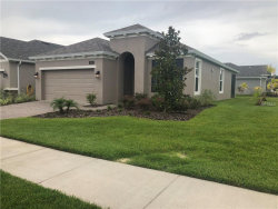 Photo of 5097 Endview Pass, BROOKSVILLE, FL 34601 (MLS # O5724342)