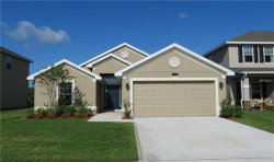 Photo of 1336 Nelson Park Court, POINCIANA, FL 34759 (MLS # O5725527)