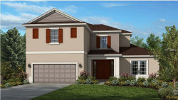 Photo of 2220 Pearl Cider Street, ORLANDO, FL 32824 (MLS # O5727536)