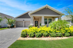 Photo of 11062 History Avenue, ORLANDO, FL 32832 (MLS # O5728281)