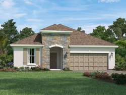Photo of 707 Cajeput Loop, TARPON SPRINGS, FL 34689 (MLS # O5734734)