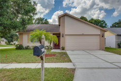 Photo of 11425 Smokethorn Drive, RIVERVIEW, FL 33579 (MLS # O5735320)