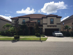 Photo of 19328 Pummelo Drive, ORLANDO, FL 32827 (MLS # O5740043)