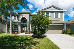 Photo of 14669 Cableshire Way, ORLANDO, FL 32824 (MLS # O5740933)