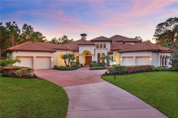 Photo of 10673 Leafwing Drive, SARASOTA, FL 34241 (MLS # O5744728)