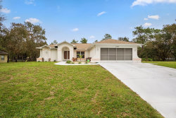 Photo of 11297 Frigate Bird Avenue, WEEKI WACHEE, FL 34613 (MLS # O5747248)