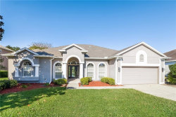 Photo of 557 Hebrides Court, APOPKA, FL 32712 (MLS # O5750370)