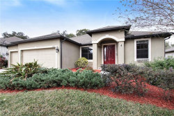 Photo of 12802 Charity Hill Court, RIVERVIEW, FL 33569 (MLS # O5751111)