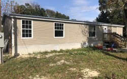 Photo of 9611 Rex Street, HUDSON, FL 34669 (MLS # O5756288)