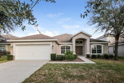 Photo of 15511 Starling Water Drive, LITHIA, FL 33547 (MLS # O5757764)