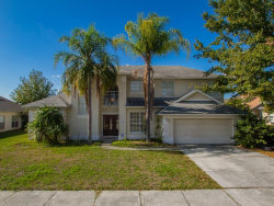 Photo of 14508 Talapo Lane, ORLANDO, FL 32837 (MLS # O5758648)