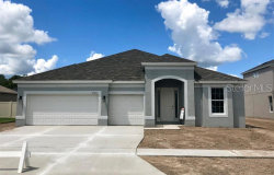 Photo of 27255 Hawks Nest Circle, WESLEY CHAPEL, FL 33544 (MLS # O5764685)