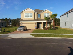 Photo of 564 Sky Top Drive, OCOEE, FL 34761 (MLS # O5764746)