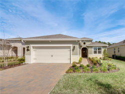 Photo of 1413 Palisades Lane, DELAND, FL 32724 (MLS # O5765011)
