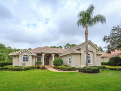 Photo of 8439 Eagles Loop Circle, WINDERMERE, FL 34786 (MLS # O5765154)